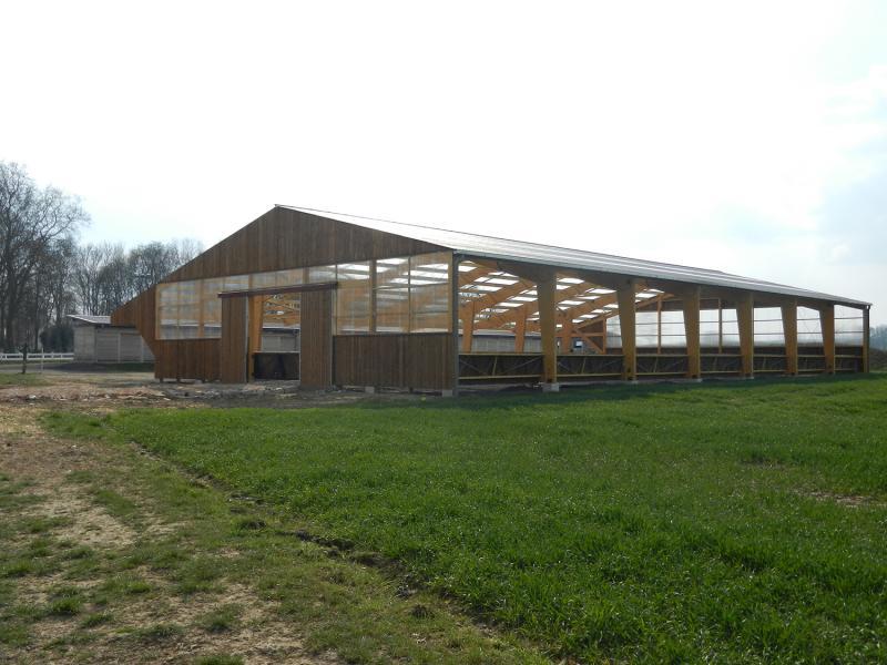 Portique grandes portées - Bâtiment industriel bois